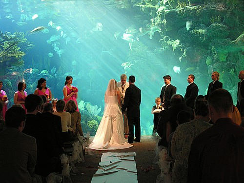 Unique wedding venues don t limit yourself to the for Wedding reception location ideas